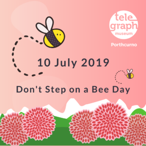 Graphic designed imge featuring pink background with green foliage and pink flower, with black text which reads 10 July 2019 Don't Step on a Bee Day, and smaller bee cartoons and Telegraph Museum logo.