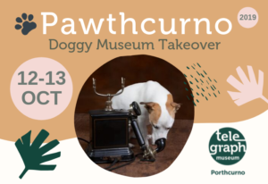 Graphic design image with peach and white background and sub-tropical leaf designs, with a picture of a dog listening to a historic telephone, with text that reads 'Pawthcurno doggy friendly takeover day 12 and 13 October at the Telegraph Museum Porthcurno'