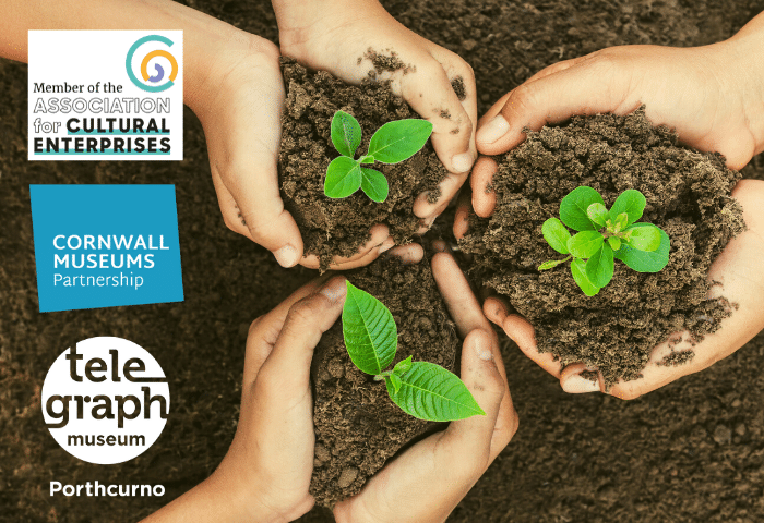 Colour photograph showing hands holding green seedling plants which represent Telegraph Museum Porthcurno's commitment to environmental sustainability and the nominations for awards for Cultural Enterprises Green Award and the Cornwall Museums Partnership award for Environmental Impact.
