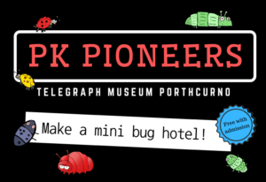 Graphic picture with bug illustrations with black background and coloured text which reads PK PIONEERS at the Telegraph Museum Porthcurno during February half term, making a mini bug hotel.